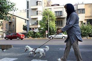 سگ گردانی ممنوع شد