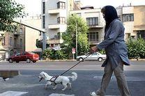 سگ گردانی در محل بازی کودکان در بوستان های تهران ممنوع شد