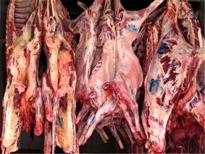 133 تن گوشت و فرآورده خام دامی در همدان ضبط و معدوم شد
