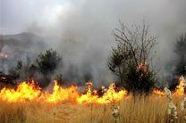 10 درصد عرصه های منابع طبیعی استان اصفهان مستعد آتش سوزی هستند