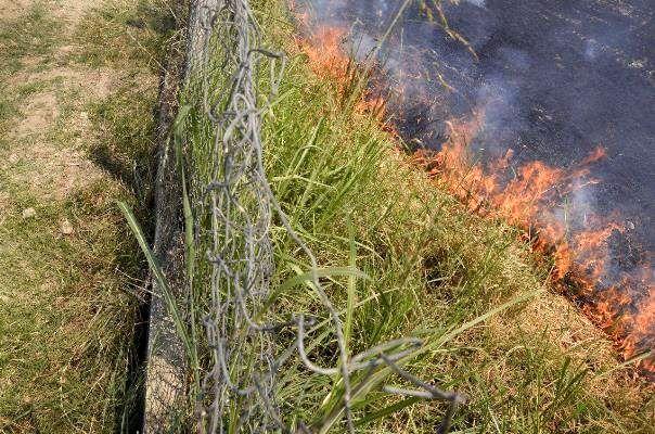 ۷ اکیپ مقابله با آتشسوزی مزارع در اردبیل فعال شد