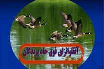 اجرای طرح پایش و مراقبت بیماری آنفلوانزای فوق حاد پرندگان در  لنجان