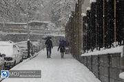 درگذشت ۸ نفر در برف شمال کشور / نجات ۳ زن باردار