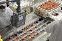 ایجاد پایانه صادراتی محصولات دریایی در گیلان