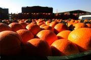 71 غرفه برای توزیع میوه شب عید در زنجان پیشبینی شده است