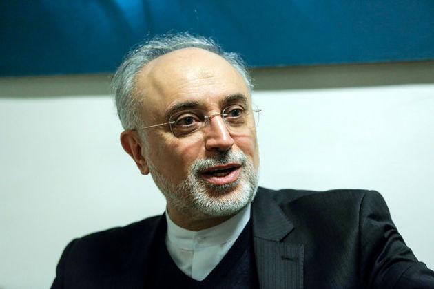 صالحی: اگر ملتی سرنوشت خود را در دست نگیرد تاریخ قضاوت بیرحمانهای برای آن ملت خواهد داشت