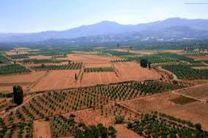 ۷۰۰ هکتار از زمین های شیبدار آمل شناسایی و آماده واگذاری است
