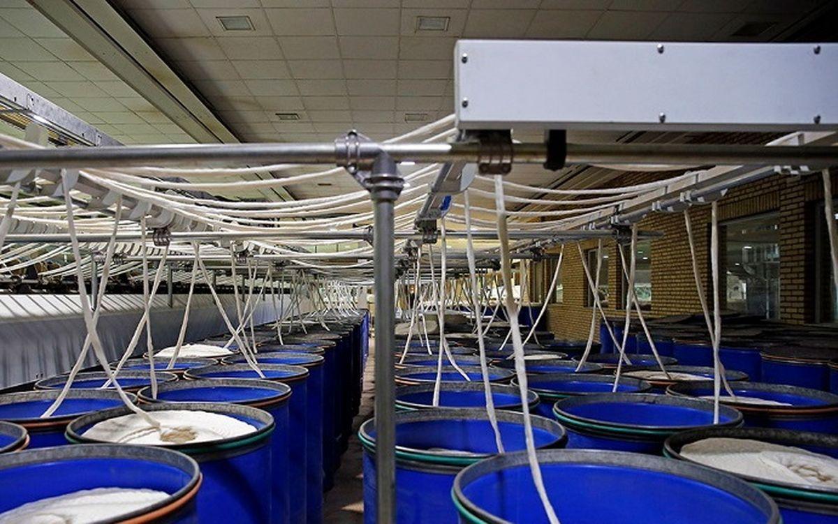 تولید در کارخانه لبنیات وارنا جریان گرفت/ برگزاری ۸۳ جلسه موثر در جهت احیای کارخانه
