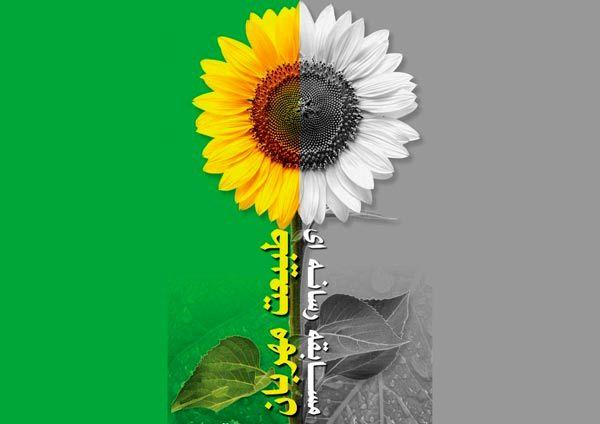 برگزیدگان مسابقه رسانه ای «طبیعت مهربان» معرفی شدند
