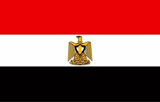 اتباع مصری بازداشت شده در ایران آزاد شدند
