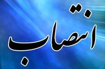اسدالله علیزاده سرپرست سازمان منطقه آزاد ارس شد