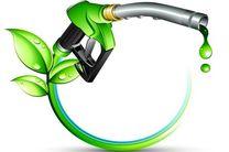سوخت زیستی؛ راهکاری برای کنترل مصرف سوختهای فسیلی در کشور