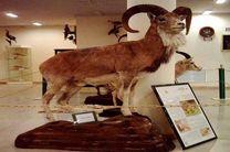 بازدید از موزه تنوع زیستی اصفهان رایگان است