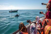 برگزاری نخستین همایش گردشگری دریایی کشور در هرمزگان