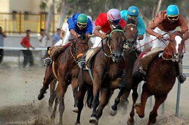 30 هیات ورزشی در شهرستان مهریز فعالیت دارد