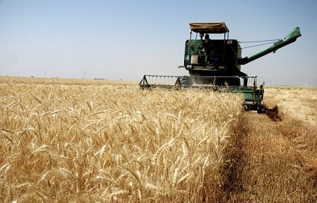 44 هزار و 700 میلیارد ریال تسهیلات مکانیزاسیون به کشاورزان پرداخت شد