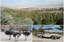 اولین پارک سافاری کشور در کرج افتتاح شد