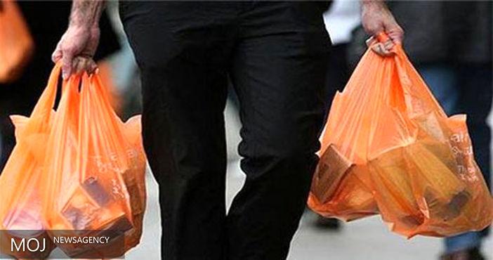 ضرورت حذف کیسههای پلاستیکی در خانواده ها