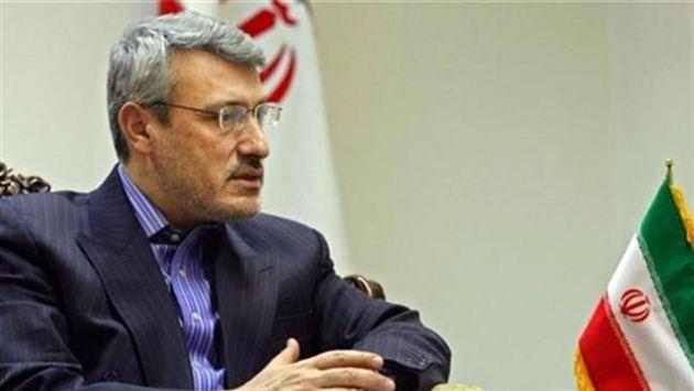 توضیحات روشنگرانه «بعیدینژاد» درباره مباحث مربوط به تشکیل دولت سایه در ایران