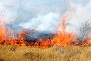 مهار آتش سوزی بیش از 6 هکتار از مراتع شهرستان سمیرم