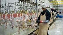 دلایل گران فروشی مرغ در تهران چیست؟