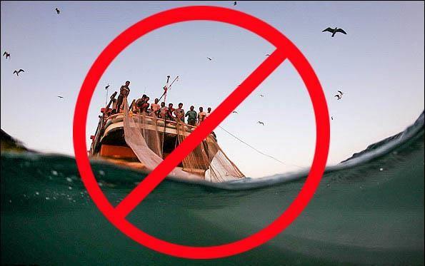 ممنوعیت صید حلوا سیاه و شوریده در آب های خلیج فارس