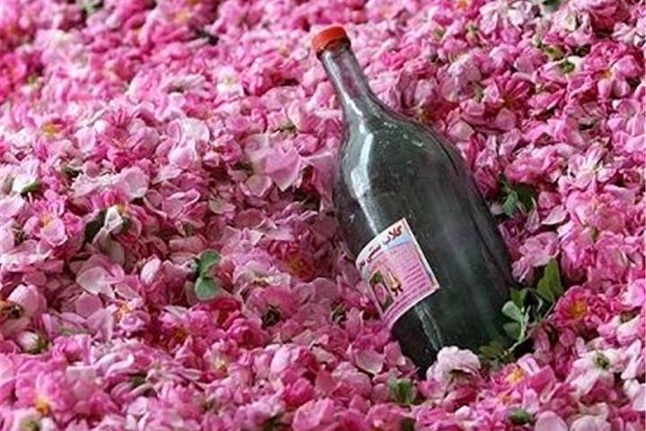 جشنواره اسلامی گل و گلاب در آران و بیدگل برگزار می شود