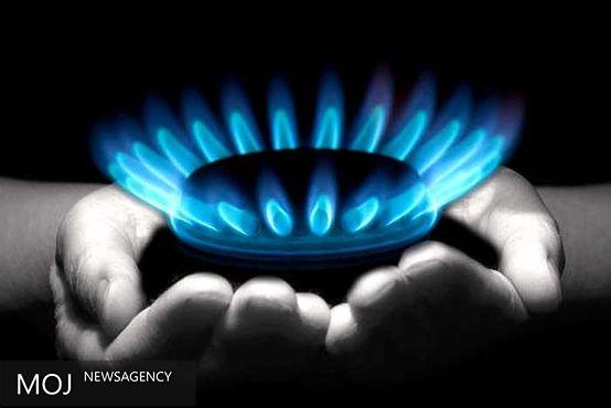 تنوع در سبد حاملهای انرژی کشور ضروری است