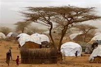 افزایش 440 هزار نفری آوارگان سومالیایی طی چهار ماه اخیر