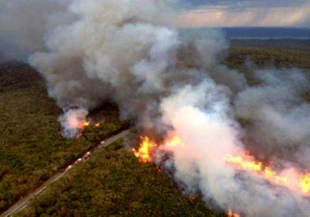 آتش سوزی منطقه تشان پس از دو روز خاموش شد