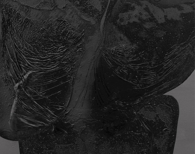 نمایش فرمهای انداموار روی بوم نقاشی