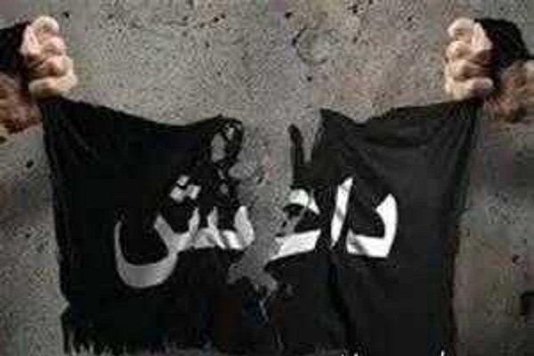 ۷ سرکرده داعش در عراق بازداشت شدند