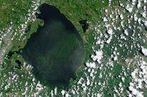 حمله جلبک های سمی به فلوریدا به تصویر کشیده شد