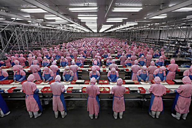نرخ بیکاری در چین  ۳.۹۵ درصد رسید