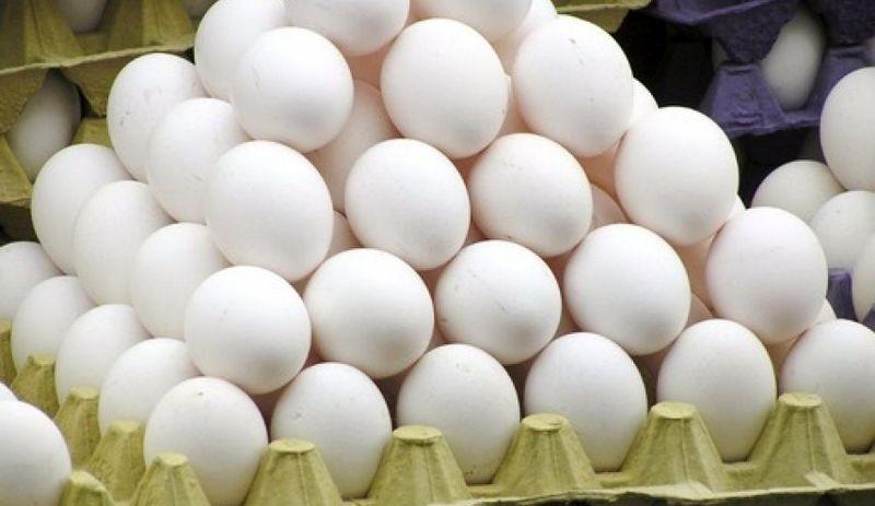 کشف تخم مرغ فاسد در آستارا