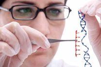 خاطرات با یک تغییر ژنتیکی پاک می شود