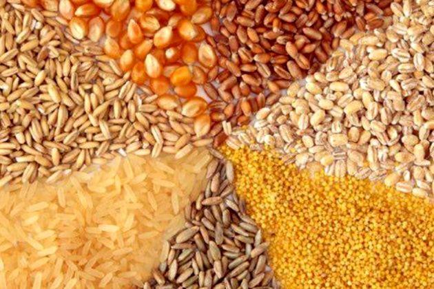 مشکلات بهداشتی صنعت دام با مصرف خوراک صنعتی مرتفع میگردد