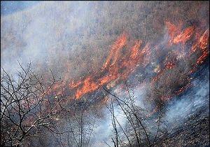 دامنه آتشسوزی جنگلهای پاوه به ارتفاعات جوانرود رسید