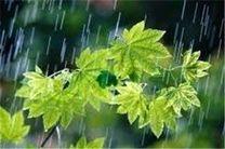 بارش 23 میلی متری باران در نطنز و بادرود