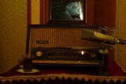 ویژه برنامه های رادیو برای روزهای پایانی ماه صفر