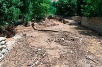 سیلاب موجب آبگرفتگی معابر و منازل شهر بلده مازندران شد
