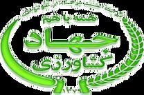 سازمان جهاد کشاورزی هرمزگان دستگاه برتر در جشنواره شهید رجایی