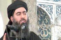 جانشین البغدادی از اتباع کشورهای عرب حوزه خلیج فارس خواهد بود