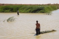 رودخانه هیرمند سیستان و بلوچستان پُر آب شد