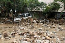 بارندگی شدید حداقل 50میلیارد تومان خسارت وارد کرد