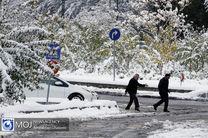 تمام مدارس تهران یکشنبه ۲۹ دی تعطیل شد