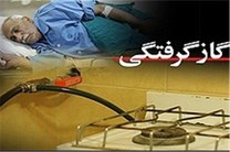 مسمومیت 51 نفر از مسافران نوروزی با گاز منواکسیدکربن در استان فارس