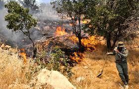 شعله ور شدن آتش جنگل های رودبار با وزش باد