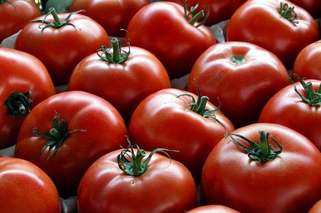 بازیابی آسیب ریوی با خوردن سیب و گوجه فرنگی