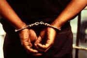 هوشمندی پلیس کلاردشت و دستگیری سارق حرفهای منزل